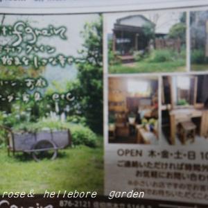 オープンだって~♪  行って見たいな地元にグリンー雑貨、手作りの家具のショップ。