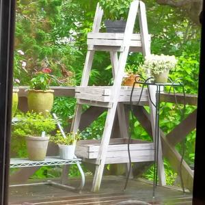 花友さんのお庭へ~楽しいイベント。(^^♪