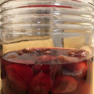 自家製梅酢の賞味期限は?保管期間でも腐ることも…その判断方法とは。