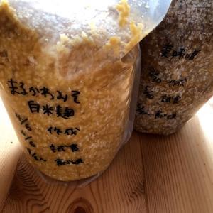 手作り味噌がしょっぱい時は熟成場所チェンジ?!食べごろの目安とは。