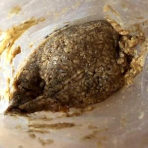 手作り味噌がパサパサで固いのは失敗ではない?!失敗例はこんなとき。