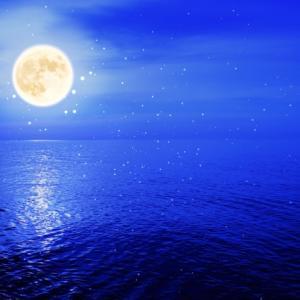 月の影 影の海(小野不由美)あらすじと感想