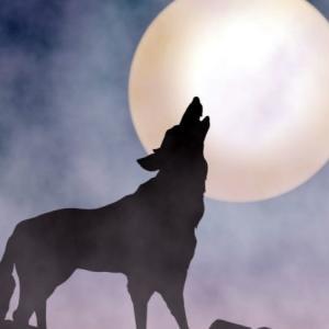 オンラインリアル脱出ゲーム「封鎖された人狼村からの脱出」に参加|イベント概要・謎解き難易度・感想まとめ