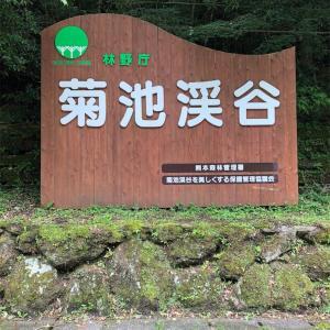 【菊池渓谷】熊本県菊池市にある大人気渓谷《熊本の絶景》