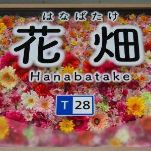 花いっぱいの花畑駅