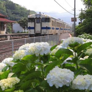 紫陽花の咲く網田駅