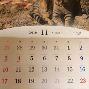 来年のニャンコカレンダー