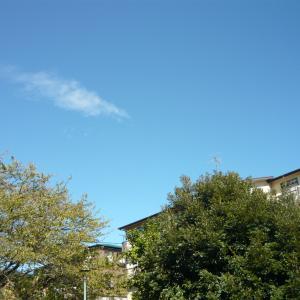 台風が去って、青空。