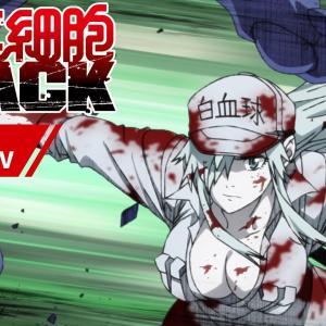 【アニメ】はたらく細胞BLACKが怖面白い