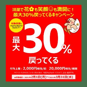 【鴻巣市×Pay Pay】スペシャルコラボキャンペーン!!