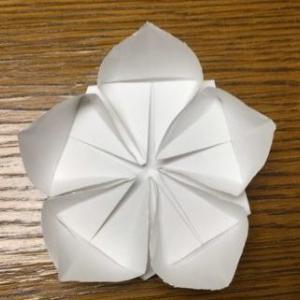 桃の花の折り紙折り方 立体的に!梅の花にも:ひな祭り飾り折り紙