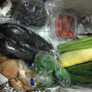 花巻市ふるさと納税5000円 野菜セット 写真付きブログレビュー