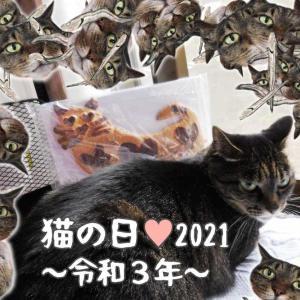 猫の日2021の猫様への献上品の数々ニャ♪