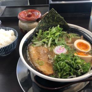 味玉ラーメン・白ご飯高菜漬けセット 麺屋みつる(大垣市)