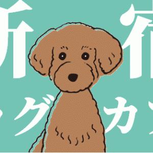 新宿のドッグカフェ6選|犬と触れ合える犬カフェと同伴可能なおしゃれカフェを紹介!
