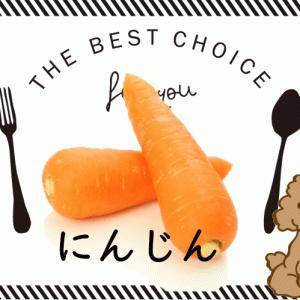にんじんは犬が食べていい健康効果のある野菜|すりおろしは体内酵素の活性!茹ではおやつに最適☆