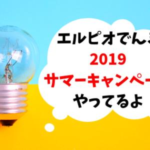 【2019年】エルピオでんきがサマーキャンペーン中!電気代カットを実現
