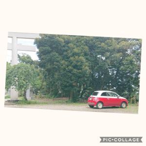 大甕神社に行ってきたのです~(FIAT500)