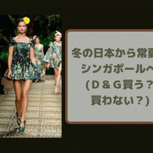 冬の日本から 常夏のシンガポールへ (D&G買う?買わない?)