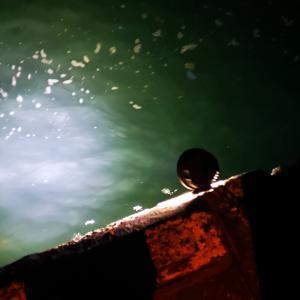 自作した集魚灯模索中。