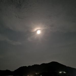 激渋のタチウオ釣り!!月と集魚灯の関係