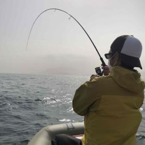 正確にはタイラバではないけど鯛が釣れるから使っているルアー