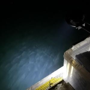 タチウオ釣りの集魚灯の照らし方を復習しとこ!