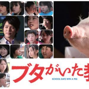 豚がいた教室