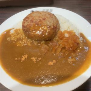 【CoCo壱】フワフワのハンバーグ