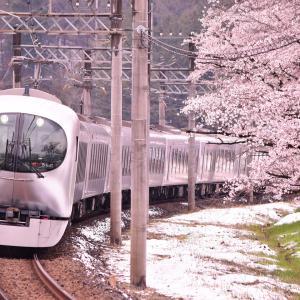 【秩父紀行#26】控えめに…雪と桜と西武線(2020/3/30)