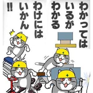 現場猫(仕事猫)の不安全行動を教訓に労災を防止しよう【わかってはいるが、わかるわけにはいかん】