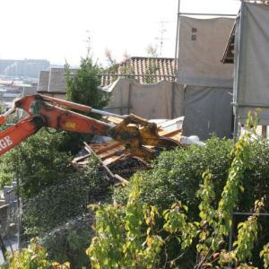 お向かいの解体工事
