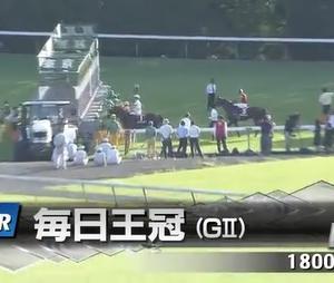 秋のGⅠ制覇への登竜門、毎日王冠!!