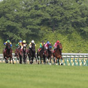 東京新聞杯・きさらぎ賞のデータから見る狙える馬