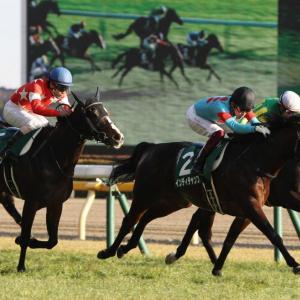 春のマイル王へと続く道、、、東京新聞杯!!狙うはアノ馬だ。