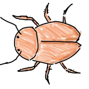 ゴキブリのマイナス成長?