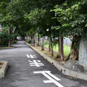 力石 - 五社稲荷神社(越谷市)
