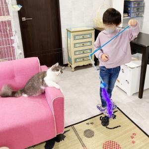 【5歳】連休終わりは癒しで締める!