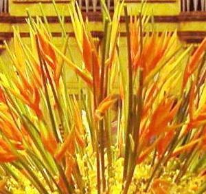 黄色とオレンジのヘリコニアでロビー装花