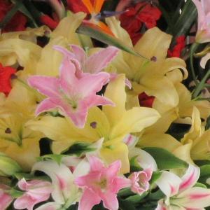 ストレリチアやユリで統一の揃い2段スタンド花
