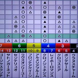 11/9 エリ女:枠番確定デ-タ・狙い馬・最終勝負