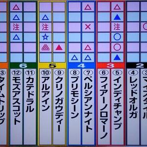 11/17マイルチャンピオンシップ・狙い馬・最終勝負