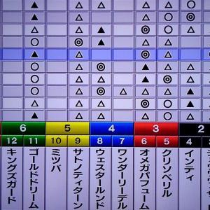 11/30 狙い馬・最終勝負 12/1 チャンピオンズC