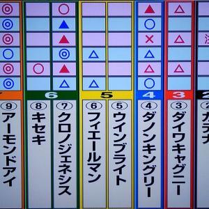 11/1 天皇賞(秋) 狙い目・最終勝負