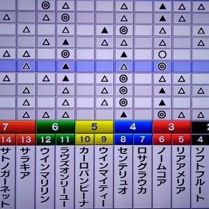 エリザベス女王杯・枠順確定 11/15 狙い馬・最終勝負