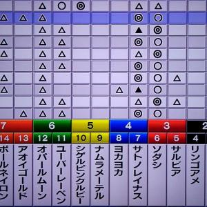 阪神ジュベナイルフィリーズ 枠順確定