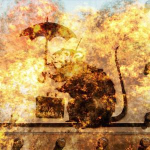 """<生物兵器>『ノートルダム大聖堂』『首里城』焼失の"""" 犯人""""は「放火ネズミ兵器」?"""