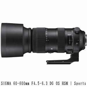 <新レンズ>SIGMA 60-600mm F4.5-6.3 DG OS HSM | Sports