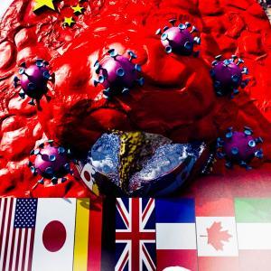 <CG>「新型コロナはウィルス兵器か?」 ~中国の世界征服への第一段階~