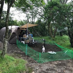 キャンプde手作りドックラン